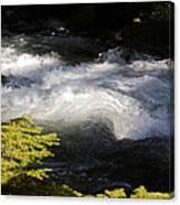 River's Ebb Canvas Print