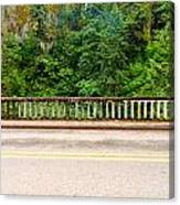 Road And Lush Green Forest Canvas Print