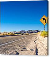 Road In The Desert #2 Canvas Print