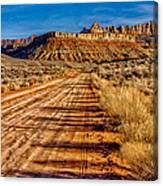 Road Into Solitude Canvas Print