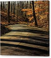 Road Into The Woods Canvas Print