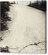Road Less Traveled Canvas Print