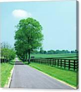 Road Passing Through Horse Farms Canvas Print