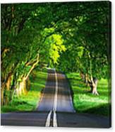 Road Pictures Canvas Print