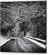 Road Through Dark Snowy Forest E93 Canvas Print