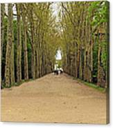 Road To Chenonceau Canvas Print