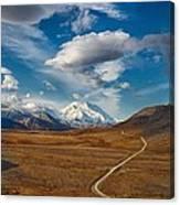 Road To Denali Canvas Print