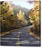 Road To Fall Canvas Print