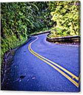 Road To Hana Canvas Print