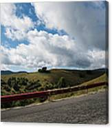 Road To Paltinis Canvas Print