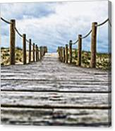 Road To The Dunes Canvas Print