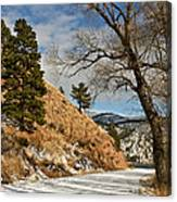 Road To The Lake Canvas Print