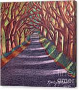 Road To The Unknown Canvas Print