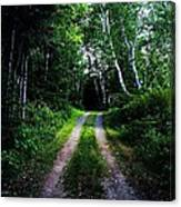 Road Trip- Back Country Road Canvas Print