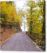 Road With Autumn Trees Canvas Print