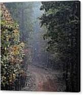 Roads 37 Canvas Print