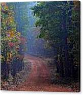 Roads 38b Canvas Print