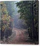 Roads 39 Canvas Print