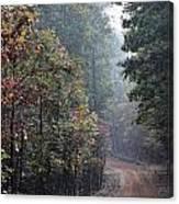 Roads 41 Canvas Print