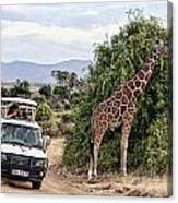 Roadside Attraction Canvas Print
