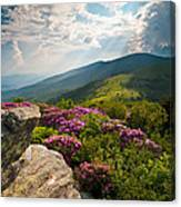 Roan Mountain From Appalachian Trail Near Jane's Bald Canvas Print