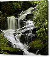 Roaring Creek Falls Canvas Print