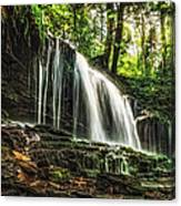 Roaring Forest Waterfall Canvas Print