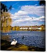 Roath Park Lake Canvas Print