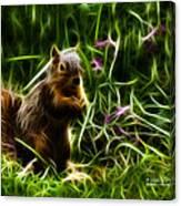 Robbie The Squirrel -0146 - F Canvas Print