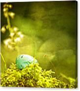 Robin's Egg On Moss Canvas Print