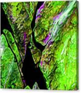 Rock Art 20 Canvas Print