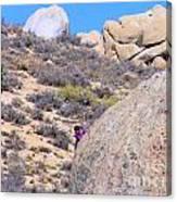 Rock Climbing Canvas Print