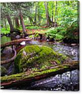 Rock Creek Canvas Print