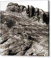 Rock Details Canvas Print