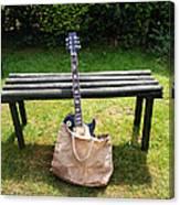 Rock N Roll Guitar In A Bag Canvas Print
