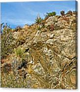 Rock Pile In Black Rock Canyon On Panorama Loop Trail In Joshua Tree National Park-california Canvas Print