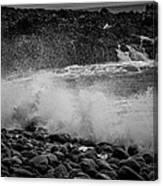 Rock Shore Canvas Print