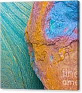 Rock Skin Canvas Print