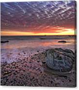 Rock Stopper Canvas Print