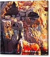 rock structure at Sea of Cortez Canvas Print