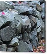 Rock Walls Canvas Print