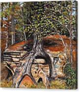 Rock Wolf Den Canvas Print