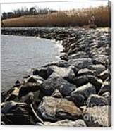 Rocks Along The Shore At Sandy Point Canvas Print