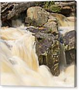 Rocks And Rapids Canvas Print