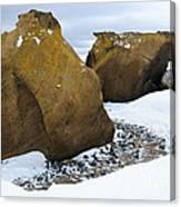 Rocks At Brown Bluff, Antarctica Canvas Print