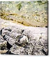 Rocks At Georgian Bay Canvas Print