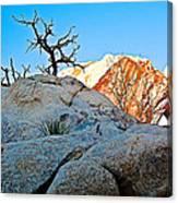Rocks In Sun And Shade Along Barker Dam Trail In Joshua Tree Np-ca- Canvas Print