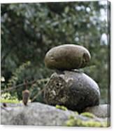 Rocks In The Garden Canvas Print