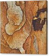 rocks 'IV Canvas Print