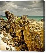 Rocks Of Elafonisi Island Canvas Print